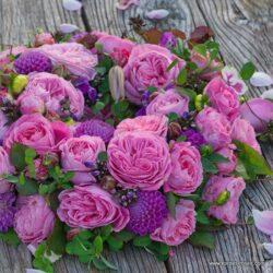 rose_rosa_beetrose_marie-menriett_kordes_2_2